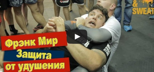 rear-naked-choke-escape-frank-mir